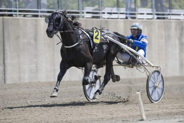 Momarken15062017_Cato Antonsen vant løp 1 med Noir Sun_foto_Roger Svalsrød_hesteguiden.com